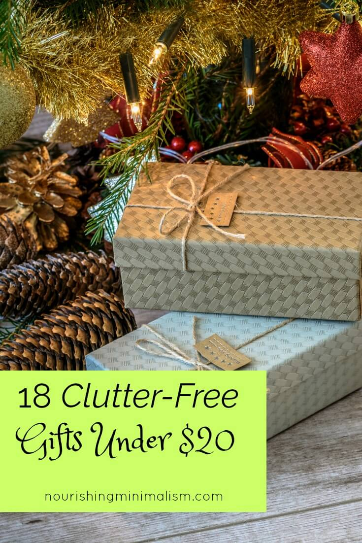 18 Clutter-Free Gifts Under $20