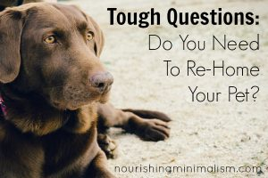Tough Questions: Do You Need To Re-Home Your Pet?