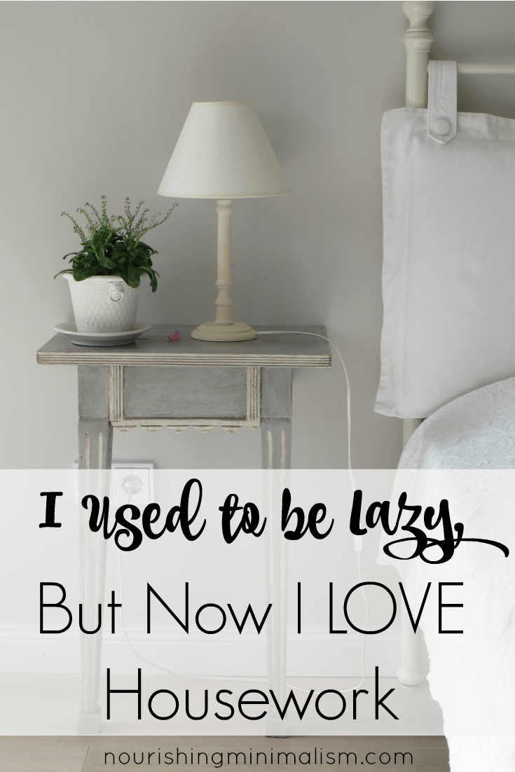 I Used to be Lazy, But Now I LOVE Housework