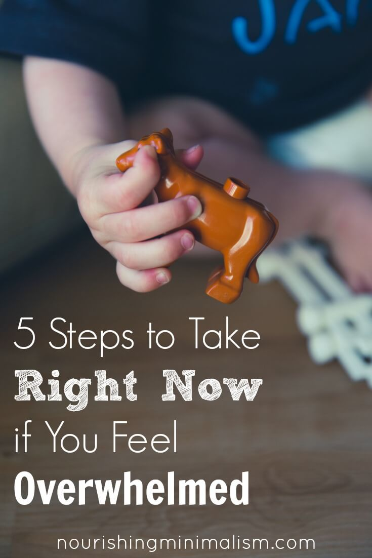5 Steps to Take Right Now if You Feel Overwhelmed