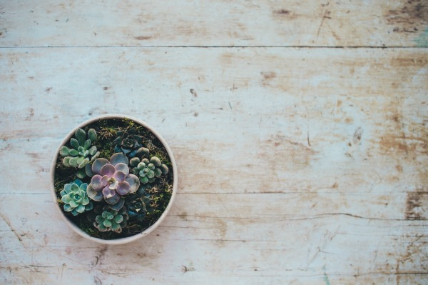 Embracing Minimalism Begins With Changing Your Focus