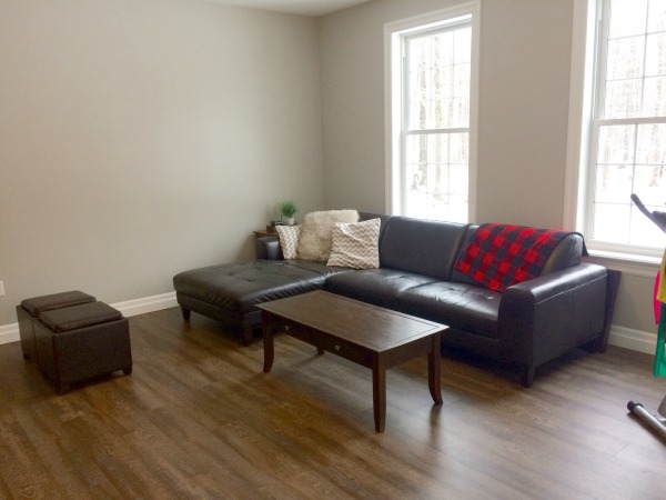 Minimalist Family Room 2