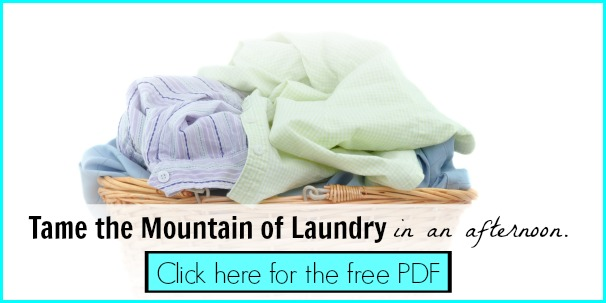 Tame the Mountain of Laundry - Free PDF