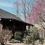 Minimalist Log Cabin - Home Tour