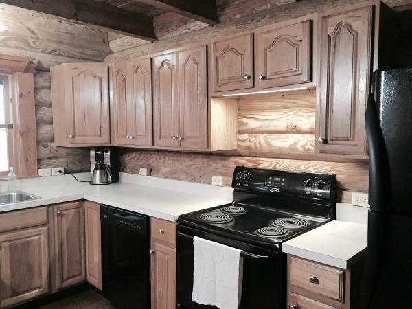 Minimalist log cabin kitchen