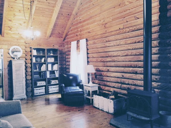Minimalist log cabin living room