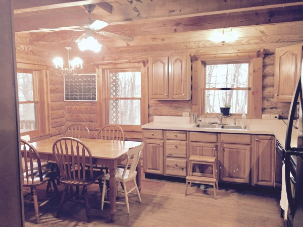 Minimalist log cabin kitchen