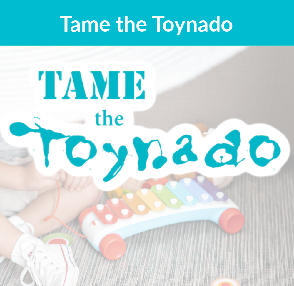 Tame the Toynado